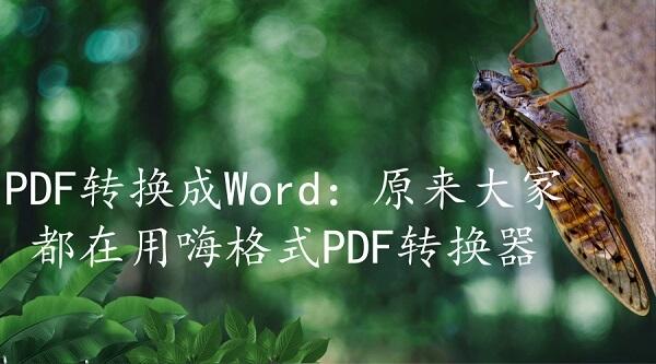 PDF转换成Word:原来大家都在用嗨格式PDF转换器