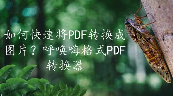 如何快速将PDF转换成图片?呼唤嗨格式PDF转换器