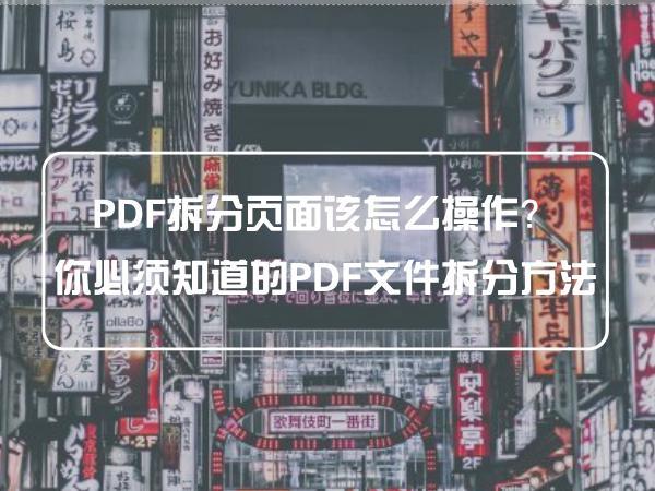 PDF拆分页面该怎么操作?你必须知道的PDF文件拆分方法