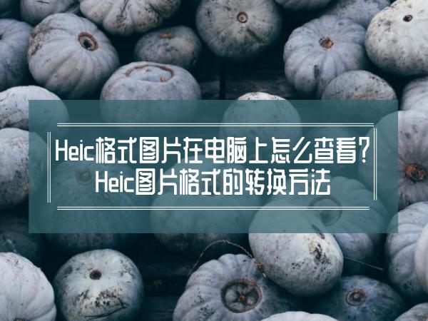 Heic格式图片在电脑上怎么查看?Heic图片格式的转换方法
