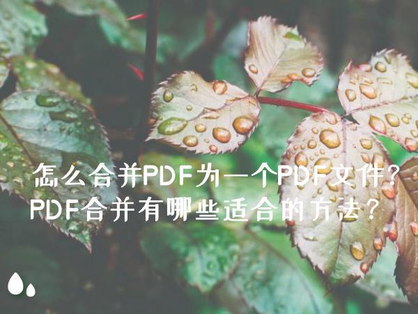 怎么合并PDF为一个PDF文件?PDF合并有哪些适合的方法?