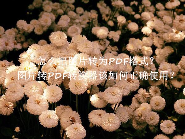 怎么把图片转为PDF格式?图片转PDF转换器该如何正确使用?