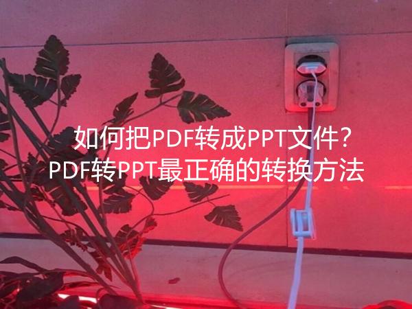 如何把PDF转成PPT文件?PDF转PPT最正确的转换方法