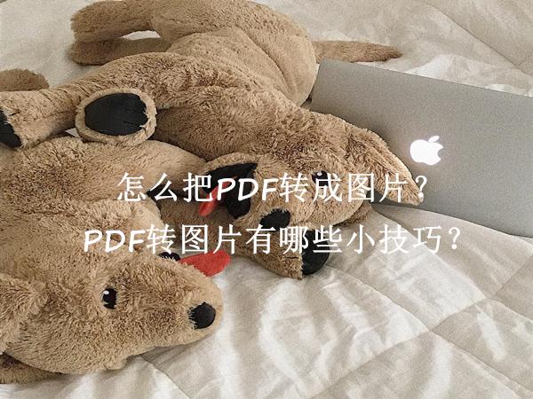 怎么把PDF转成图片?PDF转图片有哪些小技巧?