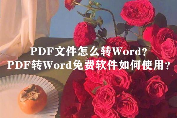 PDF文件怎么转Word?PDF转Word免费软件如何使用?