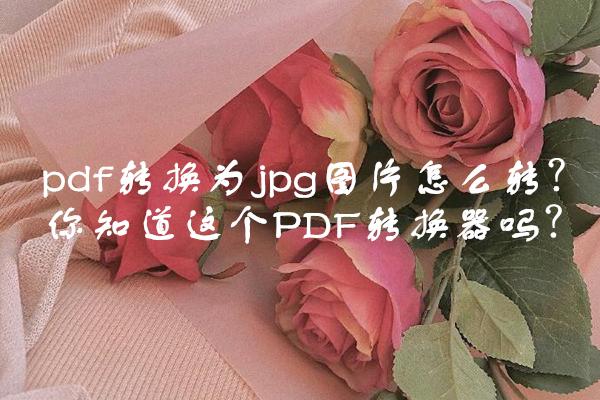 pdf转换为jpg图片怎么转?你知道这个PDF转换器吗?