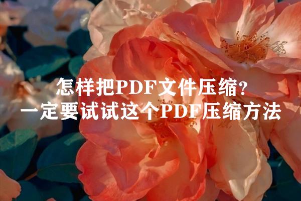 怎样把PDF文件压缩?一定要试试这个PDF压缩方法